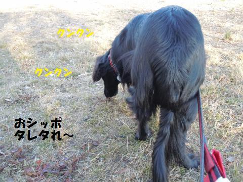 007_convert_20110131172649.jpg