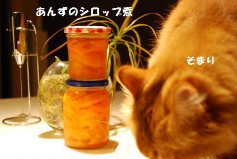 021_convert_20090713130336.jpg