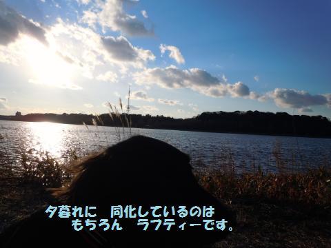 021_convert_20110131180255.jpg