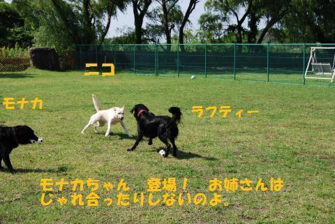 024_convert_20090624083906.jpg