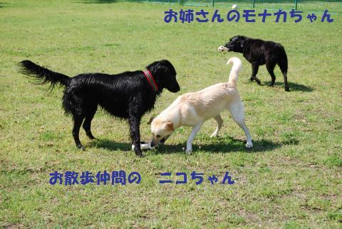 027_convert_20090624082423.jpg