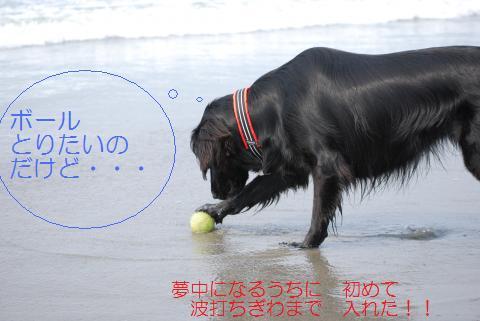 027_convert_20090629124106.jpg