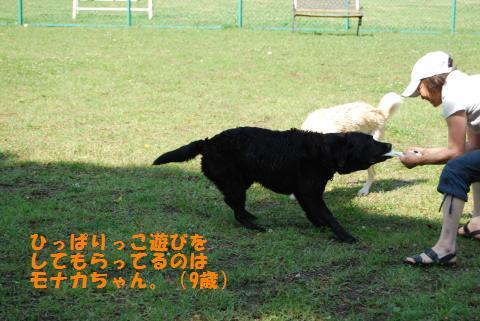 037_convert_20090624084624.jpg