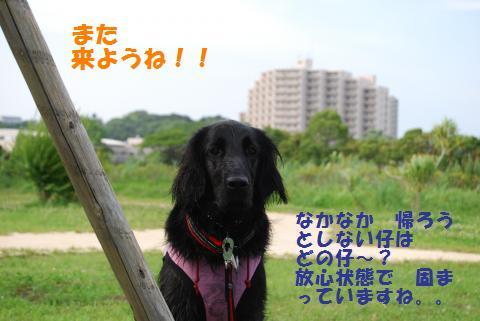 058_convert_20090624090130.jpg