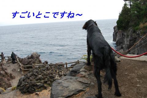 DSC_0307_convert_20090227185925.jpg