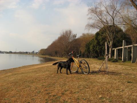 佐鳴湖サイクリング