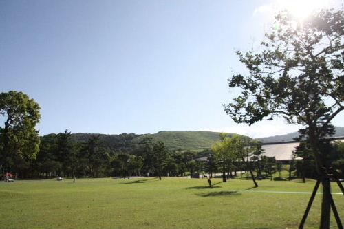 奈良公園♪