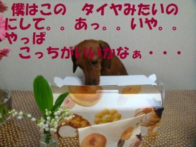 convert_20090425151638.jpg