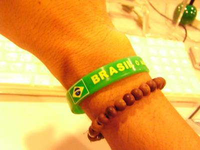 BRASIL FESTIVAL 2008-9