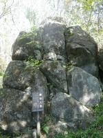 tsukubasan No.14