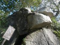 tsukubasan No.17