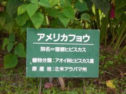 生駒高原にて3