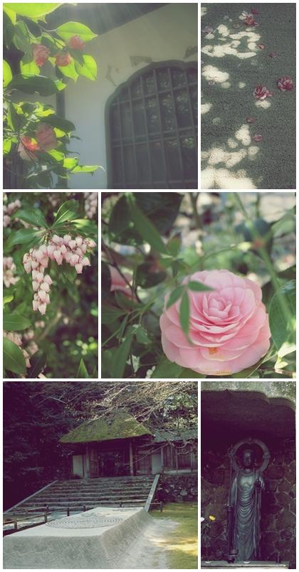 春の法然院