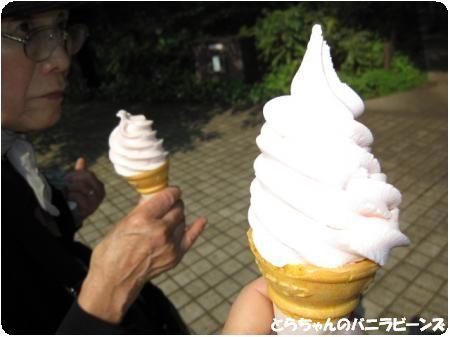 バラのソフトクリーム