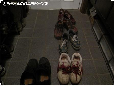 玄関の靴たち