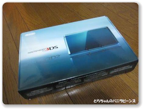 3DS1.jpg