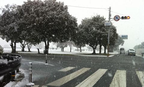 雪の平城旧跡