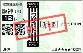 20110306阪神12R的中