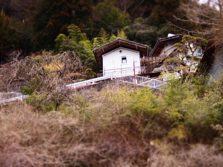 両神山リベンジ 42