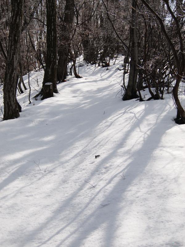 2012年  3 月3日  城峰山  14
