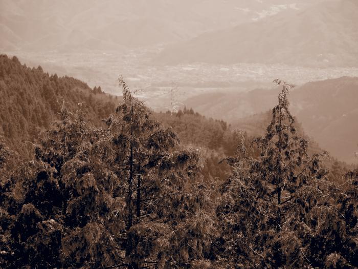 2012年  3 月3日  城峰山  22