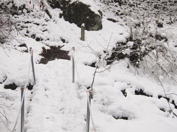 2012  3月11日 埼玉 武甲山 5