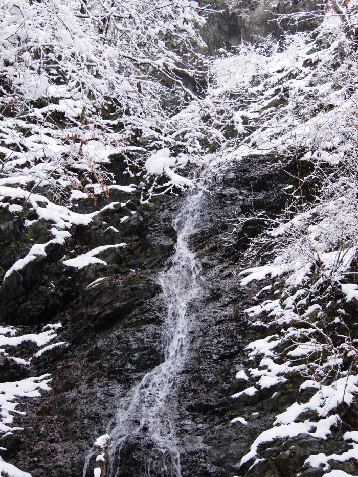2012  3月11日 埼玉 武甲山 39