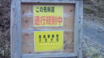 NEC_0036.jpg