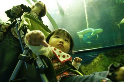 初めての水族館で興味津々
