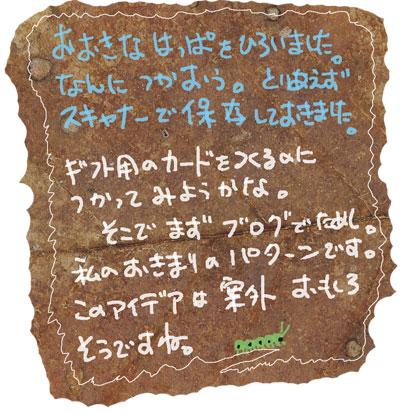 20061026130449.jpg