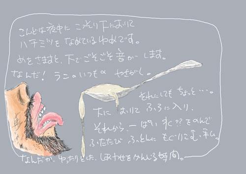 20061112182027.jpg