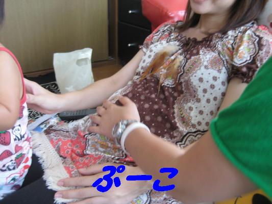 IMG_3841_1.jpg