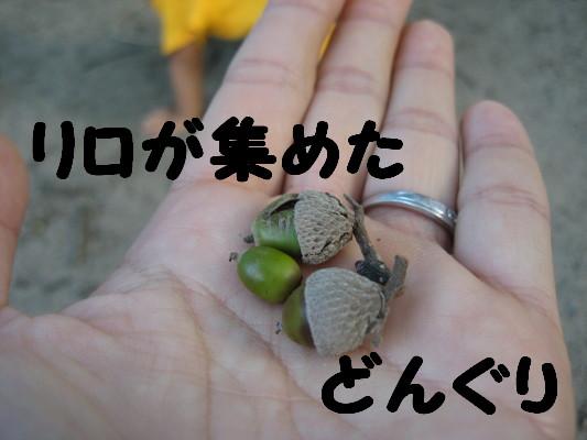 IMG_3986_1.jpg