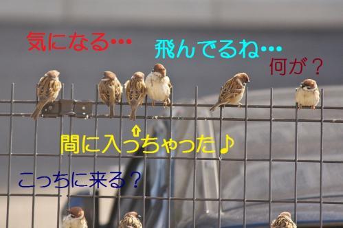 020_20120329214446.jpg