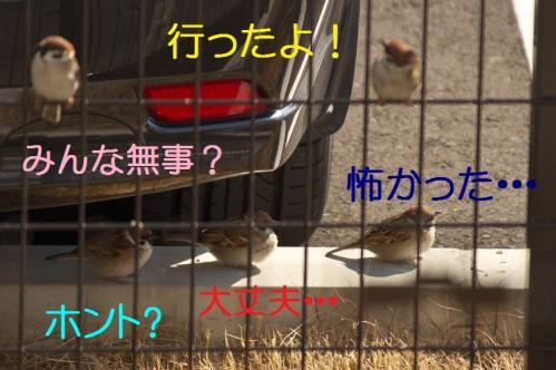 070_20120329214528.jpg