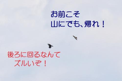 080_20120328213540.jpg