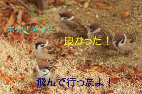 090_20120328213540.jpg