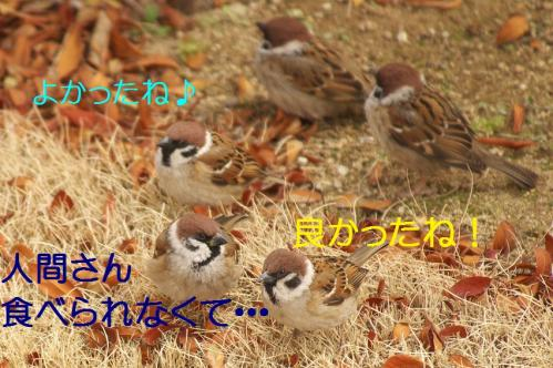 100_20120328213540.jpg