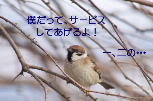 130_20120408223932.jpg
