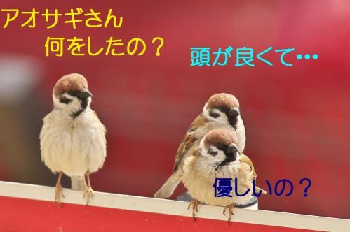 200_20120408224858.jpg