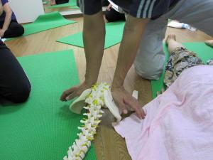 seitai Yoga