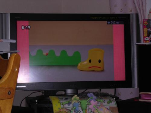 姫が好きなテレビ