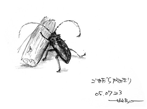 090208-2.jpg