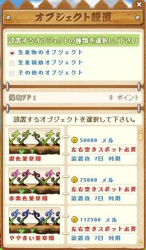 Maple110810_215255.jpg