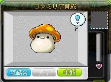 Maple110810_221727.jpg