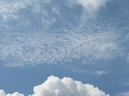 2008.08.31-ウロコ雲1