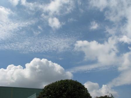 2008.08.31-ウロコ雲2