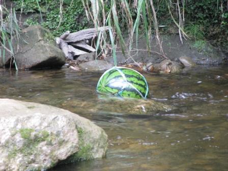 2008.07.26-ディキャンプ・川のスイカ