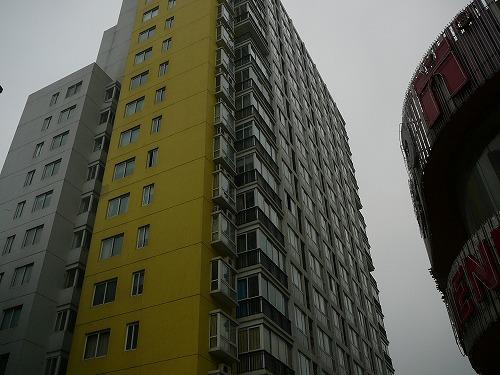 20080113No(016).jpg