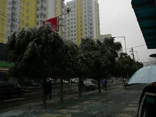 20080128No(008).jpg